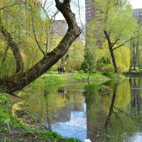Весна! :: Larisa Simonenkova