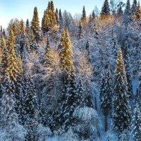 Наша красавица Сибирь :: Виктор