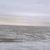 Финский залив Сегодня :: Митя Дмитрий Митя