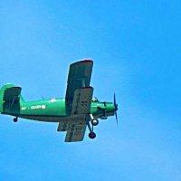 Только в полёте живут самолёты! ... ( небесный тихоход ) ) :: Елена Хайдукова  ( Elena Fly )