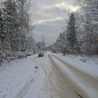 Зимняя дорога :: Ольга Довженко