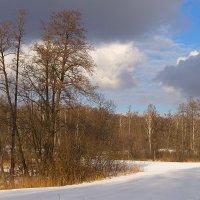 Такой изменчивый февраль -- то ждет весны, то зиму жаль. :: Инна Щелокова