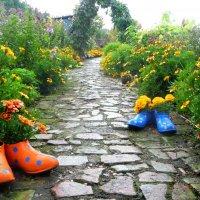 Дорожка в саду. :: Люсьена Шах
