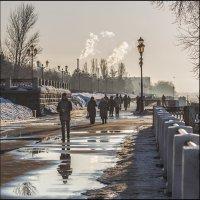 Тёплый день в феврале :: Александр Тарноградский