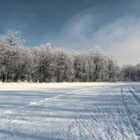 На лыжной базе.. :: Андрей Заломленков