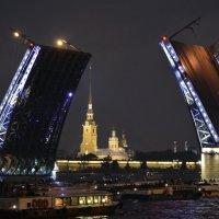 Дворцовый мост :: Владислав Иопек