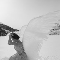Ангел :: Батик Табуев