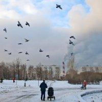 У Гольяновского пруда в Москве :: Ольга Довженко