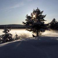 Туман над озером в снегу. :: Галина Полина
