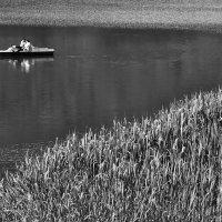 Тихая вода :: Tanja Gerster