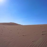 Белое солнце пустыни... :: Владимир Жданов