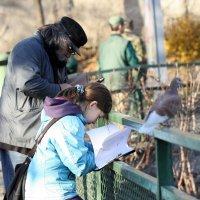 Дедушка с внучкой, зоопарк :: ZNatasha -