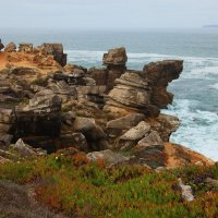 Португалия - буйство природы :: Anna Budyakova