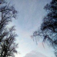 Небесная гора. :: - Ivolga