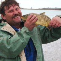 Золотая рыбка :: Штрек Надежда