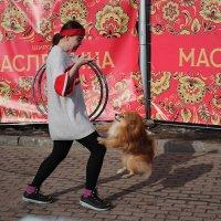 Дрессировщица собак.. :: Алексей Архипов