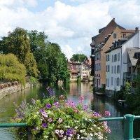 Страсбург :: Лидия Бусурина