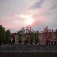 река Лопань :: Валентина M