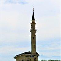 Мечеть :: Василий