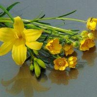 Жёлтый букетик. :: nadyasilyuk Вознюк