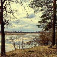 Озеро просыпается :: Татьяна