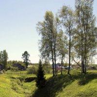 У истоков ручья :: Nikolay Monahov