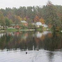 Осень... :: Герович Лилия