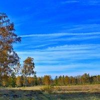 Осенний пейзаж :: Roman PETROV