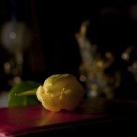 История с желтым тюльпаном :: Ольга Винницкая (Olenka)