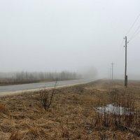 туман :: Сергей Бойцов