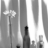 С бутылками :: Alla Shapochnik