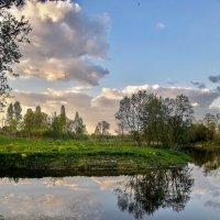 Хрупкие очертания весны :: Лара Симонова