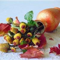 Осенние цветы. :: nadyasilyuk Вознюк
