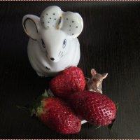 Мышки :: Вера