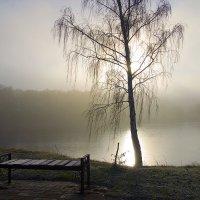 Два одиночества. :: Инна Щелокова