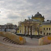 Хоральная синагога. :: Анастасия Смирнова