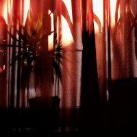 untitled  ( abstract  ) :: Андрей Пигалов