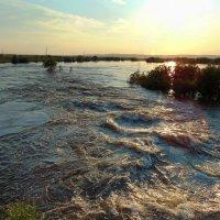 Весенние воды. :: nadyasilyuk Вознюк