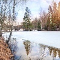 Весенний пруд :: Юлия Батурина
