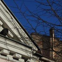 Чудесные фасады: Посидим, поокаем... :: sv.kaschuk