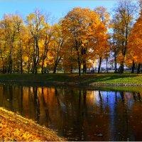 My magic Petersburg_03579_осень в Михайловском саду :: Станислав Лебединский