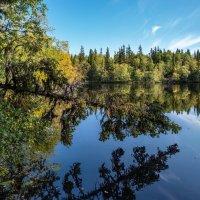 Озеро Еронимово. :: Ник Васильев