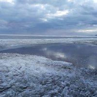 Финский залив 19.03.2020. :: Фотогруппа Весна-Вера,Саша,Натан