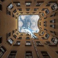 Колодец в небо :: irina Schwarzer