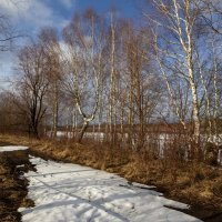Весна. :: Андрей Дурапов