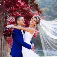 Прекрасная пара :: Anna Gelt