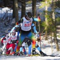 Лыжные гонки - это красиво ! :: Евгений Седов