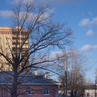 """""""Коротышка"""" и многоэтажка в весеннем пейзаже. :: Лира Цафф"""