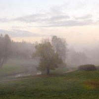 Осень в Павловске :: skijumper Иванов