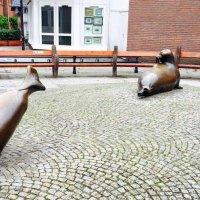 Ольденбург, Германия :: Елена